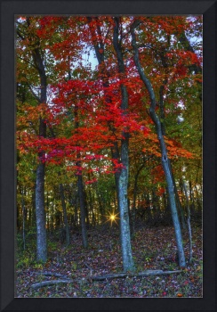 October Sunrise in Hocking Hills by Jim Crotty 15