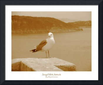 84 - Seagull With Attitude