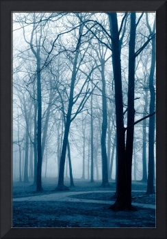 Early Fog in Blue