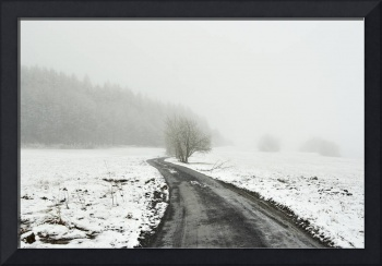 snowy winter landscape with dirt road