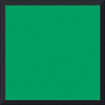 Square PMS-347 HEX-009E60 Green