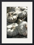 Gray Pumpkins 0196 by Jacque Alameddine