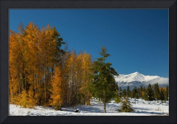 Leadville Autumn Views