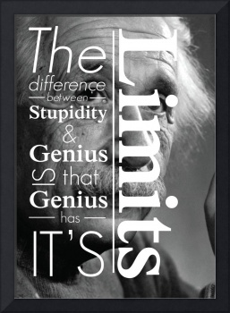 Einstein poster : The difference between stupidity