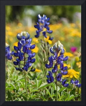 Bluebonnets at Goliad - Digital Watercolor