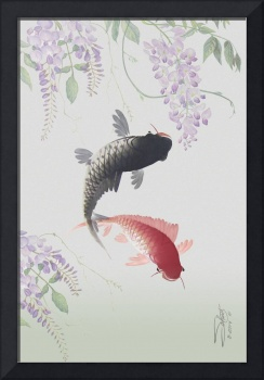 Two Koi and Wisteria Blossoms