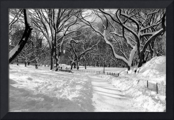 Central Park Snow, New York City