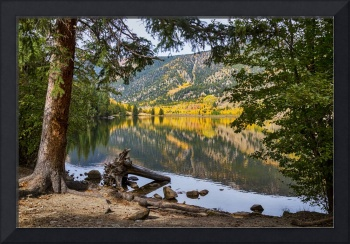 Autumn Cottonwood Lake Reflections Dreaming