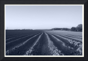 Farming:  Vanishing Points