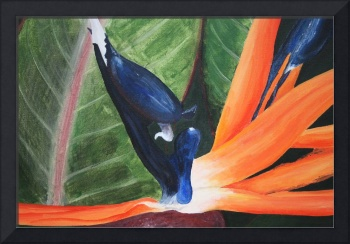 ACRYLICS_BIRD_OF_PARADISE_lg_GEMPORIUM_MULTIMEDIAS
