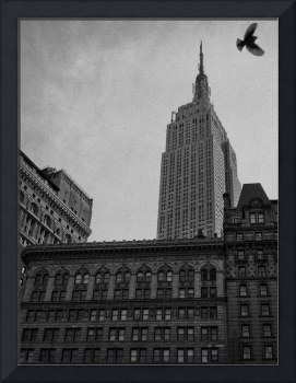 Empire State Building and Flying Dove