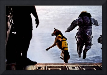 A U.S. Soldier and his military working dog jump o