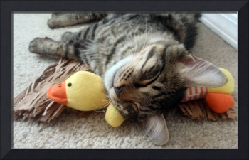 Mikino and Ducky, Naptime