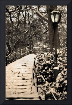 Snow Covered Stairs In Central Park, NYC