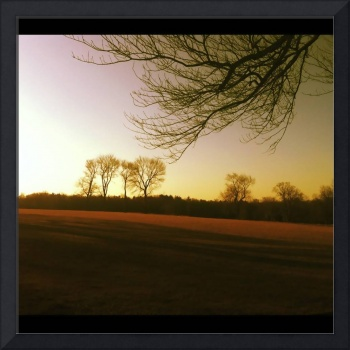 Evening Falls on the Field at Waveny Park