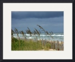 Stormy Morning in Kill Devil Hills IMG_0742 by Jacque Alameddine