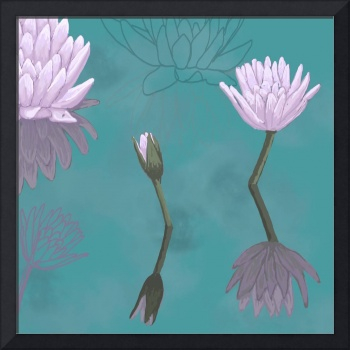 Water lilies (2)