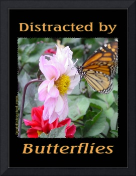 Distracted by Butterflies 04155