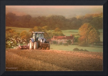 Timeless scene in the fields of Sussex