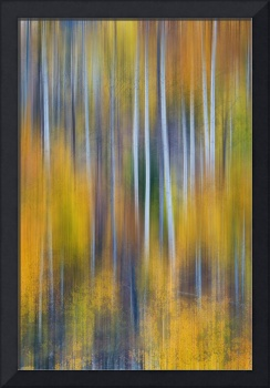 Surreal Colorful Aspen Tree Magic Abstract