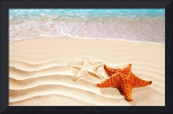 Orange Seastar In The Beach Sand