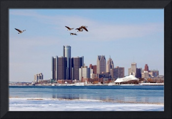 Detroit Skyline and Birds