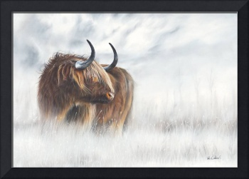 The Highlander - Scottish Highland Cow