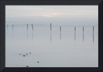 misty port gardener pillings