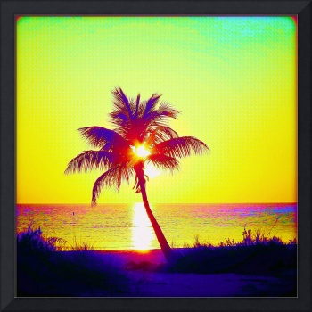 Painted Palm Sunset