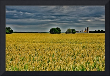 Agriculture in Ontario