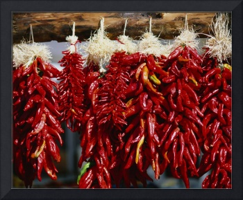 Close-up of bunches of chilli peppers hanging on