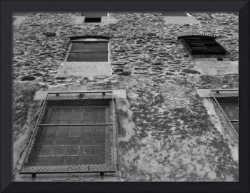 Manayunk Windows