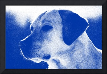 Abstract Portrait of a dog 2