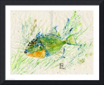 Trigger Fish in Green