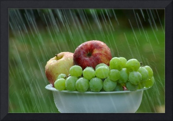 Rain on Fruit II