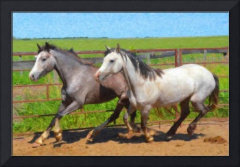Two Grey Welsh Ponies