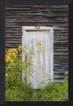 Door To An Old Shed With Wildflowers Growing Outsi