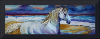 STORMY SURF EQUINE