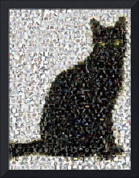 Black Cat...Amazing Montage Mosaic illusion pop ar