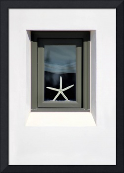 Starfish Window 2016 No.1