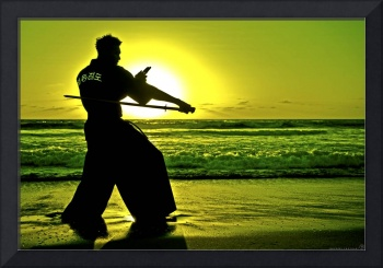 Martial Arts Man Silhouette Katana Fighter LARGE