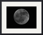 Super Moon IMG_8473 by Jacque Alameddine