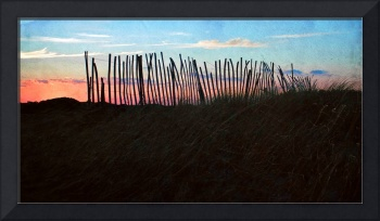 Cape Cod : Snow Fence Panorama