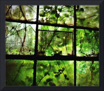 Foliated Window