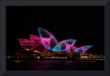 Sydney Opera House jellyfish light art amazing