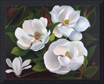 Immaculate Magnolias