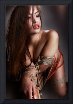 Tied asian model - Fine Art of Bondage