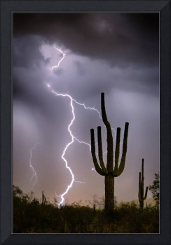 Sonoran Desert Monsoon Storming