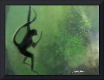 Spider Monkey in Motion 1
