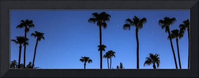 Blue Tropical Night Panorama